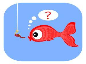 Stinkt der Fisch? oder wie kommt Molli an die Angel? (Copyright: © davidundderriese - Fotolia.com)